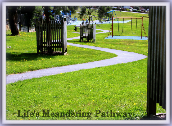 life's meandering pathway